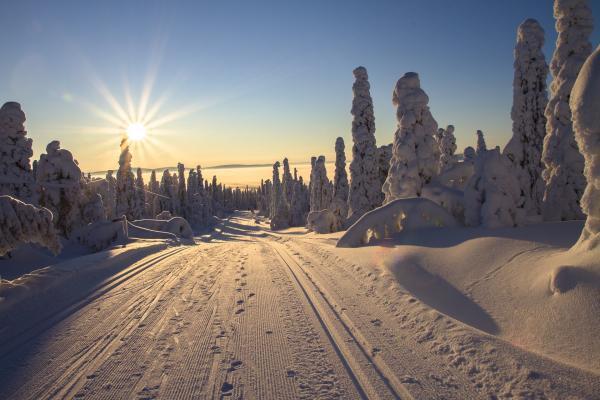 finland 2215318 1920