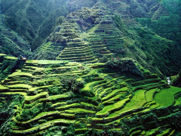 Filipiny1